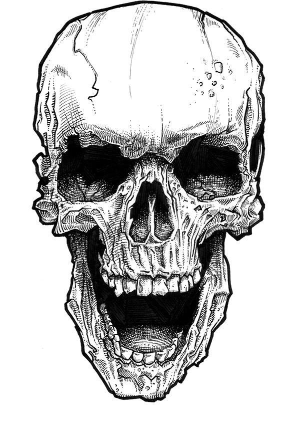 skull_001_b