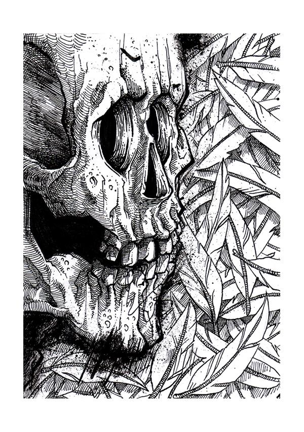 skull_3_b