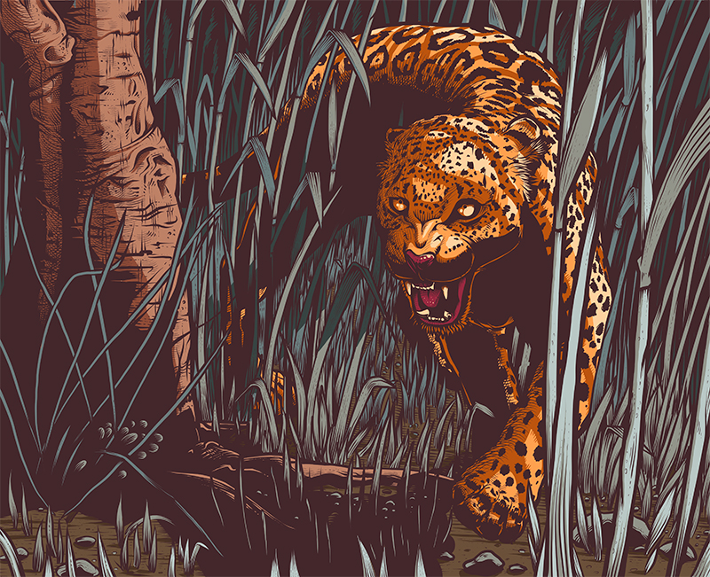 VICE_Golf_Leopard_Final_800px